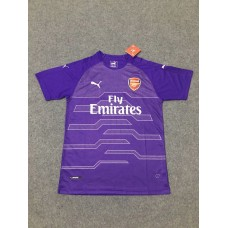 18-19 Arsenal Purple Short Sleeve Goal Keeper Jersey (18-19阿森纳紫色守门服短袖)
