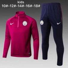 17-18 Manchester City high neck Purple kid training suit  (17-18曼城高领紫色童装训练服)